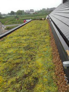 dakdekkersbedrijf Voorburg